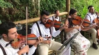 Baixar Sunday Morning - Maroon 5 | Espaço Lis 343 | Monte Cristo Coral e Orquestra Para Casamentos