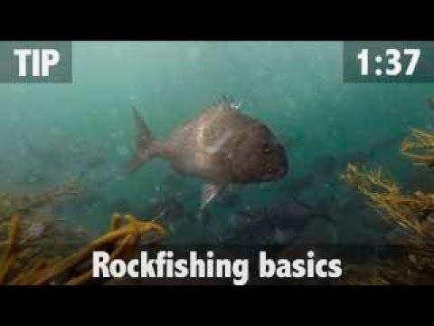 ROCK FISHING BASICS