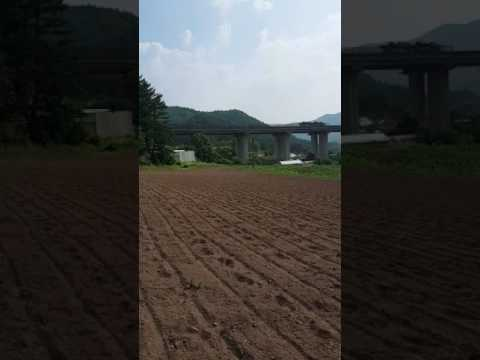 June 28th 2017 in the Farm South Korea Lilibeth Hong