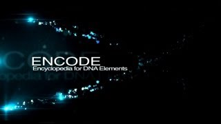 ENCODE: The Encyclopedia of DNA Elements