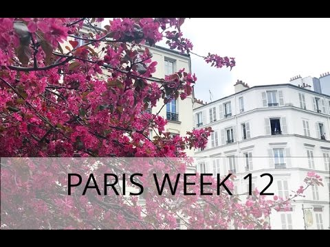 LIFE IN FRANCE Week 12 | Paris & Belarus