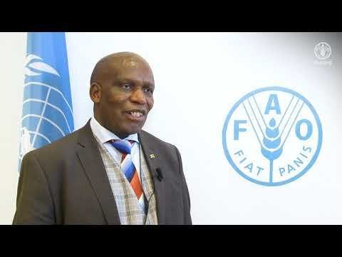 Remark By Senzeni Zokwana, Minister For Agriculture, Forestry And Fisheries Of South Africa