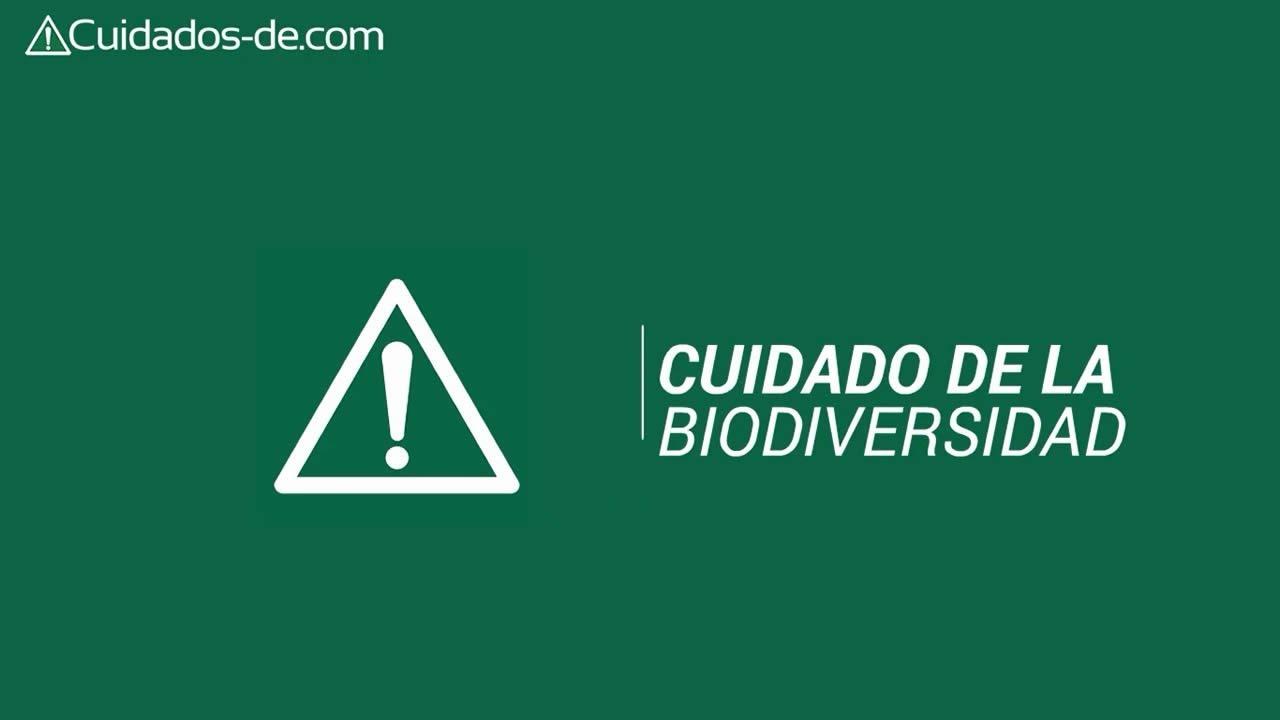 Cuidado de la biodiversidad