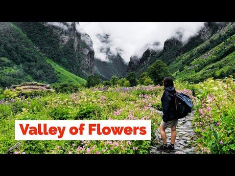 Valley of Flowers Trek | Uttarakhand | Heaven on Earth