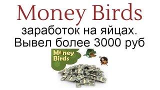 заработок на яйцах golden-birds.biz