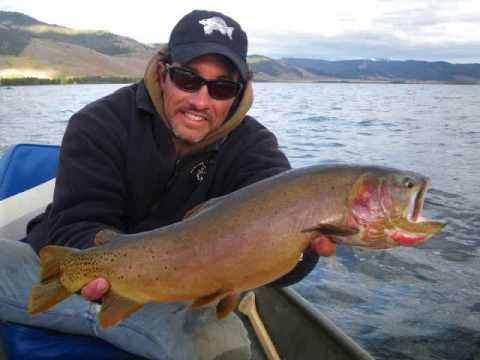 fly fishing the monster brookies cutts cutbow hybrids