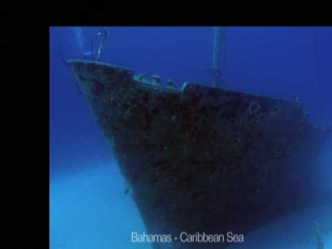 Rokab's Underwater Photography Around the World - '07