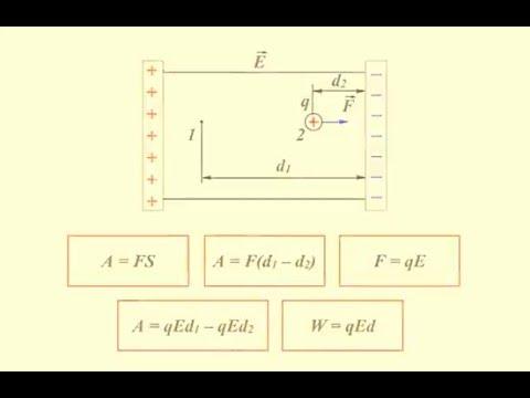 Как называется поле неподвижных зарядов
