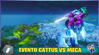 Evento Cattus vs MECA