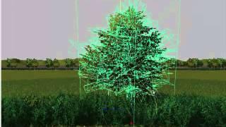 farming simulator 2013 borrar arbolito del mapa