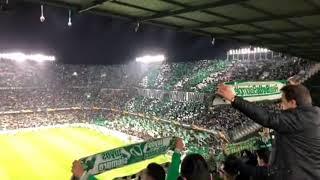 Download Video Real Betis - AC Milán. ¡¡Brutal!! Así sonó el Himno del Real Betis Balompié en el Benito Villamarin MP3 3GP MP4