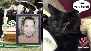 Updated Situation of Sylvester and Steve Cash's pets after he passed away, Animal's My Love