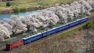 ED75 12系 花めぐり号 一目千本桜 EH500 貨物他 2019.4.14