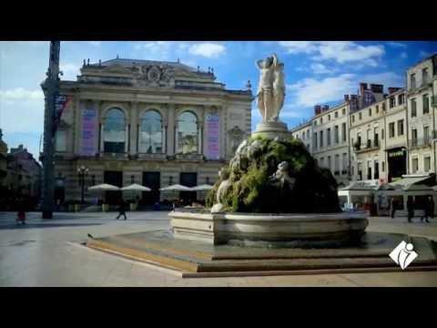 Offices de Tourisme de France : vos meilleurs alliés pour le développement touristique
