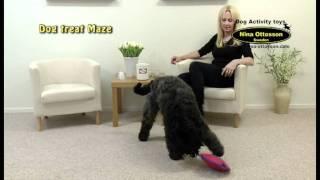 Dog treat Maze, large, Nina Ottosson