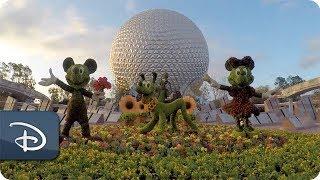 25th Epcot International Flower & Garden Festival | Walt Disney World thumbnail