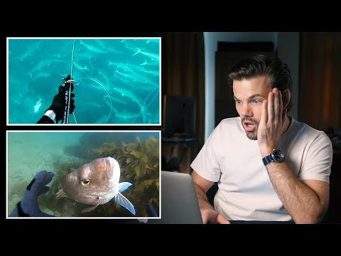 When Spearfishing Goes WRONG - Subscriber Edition.
