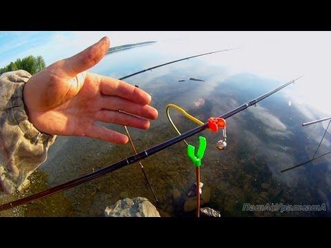 Все о рыбалке в домашних условиях