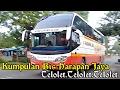 Kumpulan Telolet Bus Harapan Jaya SHD, Advante Dll Hunting di Area Kediri