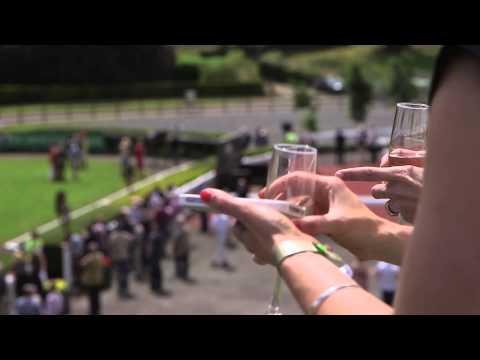 Down Royal Racecourse - Lisburn, Co Down