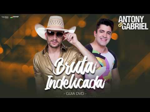 Antony e Gabriel - Bruta Indelicada (Guia DVD)