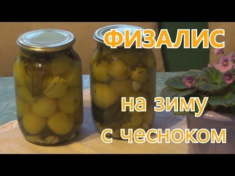 Физалис - Сады Сибири