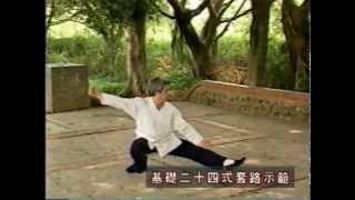 陳氏太極拳江弦蒼老師二十四式動作示範教學
