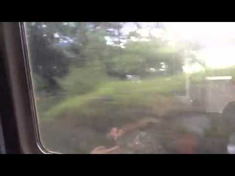 train trans Switzerland