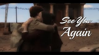 ASOUE | See You Again | The Baudelaires & The Quagmires