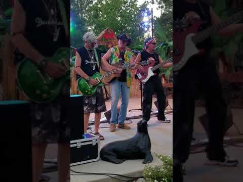 The Deckheads - Truckee Regional park 07-11-2018