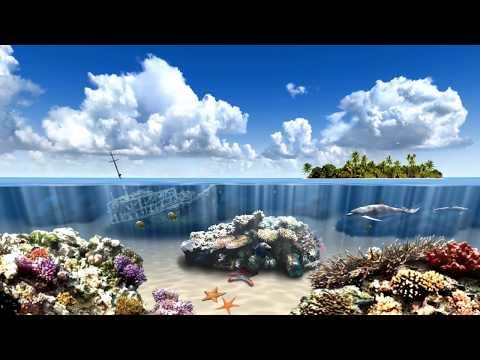 Living Dolphins 3D Screensaver