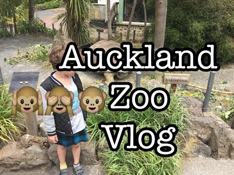 Auckland City Zoo Vlog \\Things to do in Auckland Episode 30