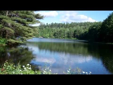 Grout's Pond  June 2012