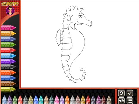 Seahorse Coloring Pages For Kids - Seahorse Coloring Pages - YouTube