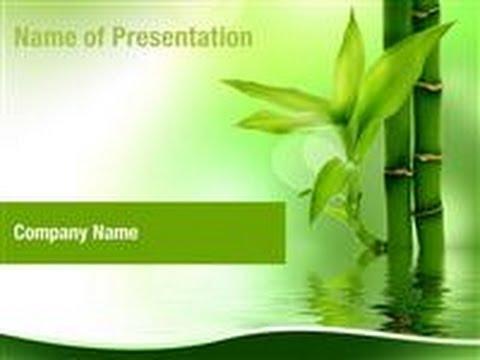 zen bamboo forest powerpoint template backgrounds digitalofficepro