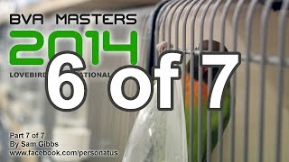 bva masters 2014 part 6 of 7