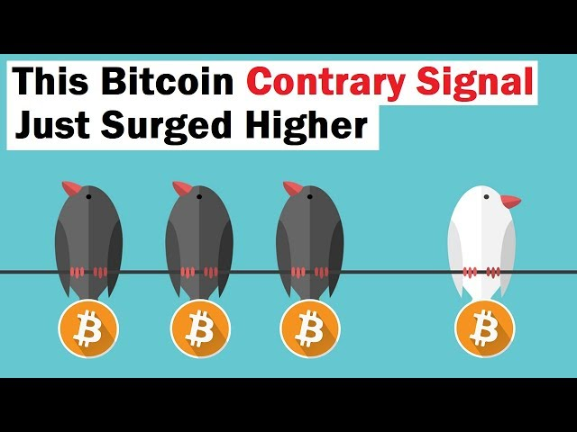 This Bitcoin Contrary Signal Just Skyrocketed
