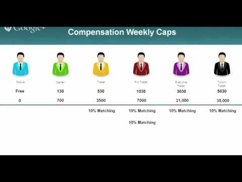 One Coin Marketing Plan or Compensation Plan