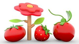 АнимаКары Изучение цветов для малышей Обучающие мультики для детей с машинами и зверями