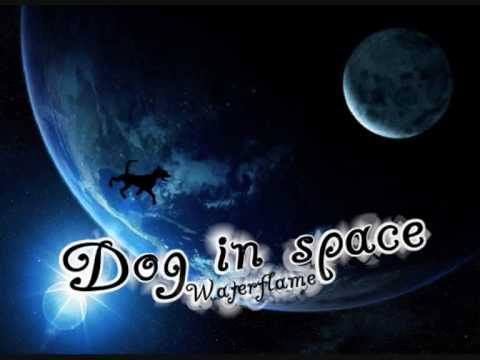 Waterflame - Dog in space