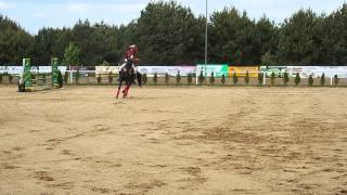Stadnina koni Hubertus  Skaryszew