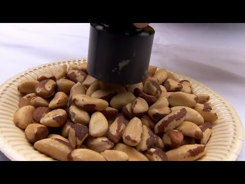 Are Brazil nuts radioactive? - Bang Goes The Theory - BBC