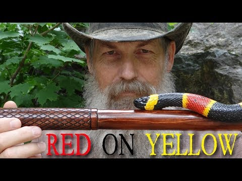 Carving a Coral Snake and Mouse Walking Stick