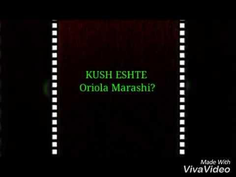 KUSH ESHTE ORIOLA MARASHI?
