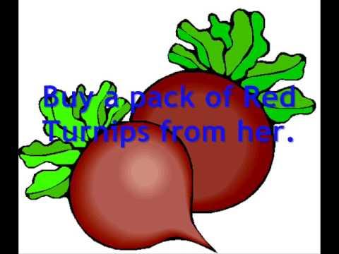 Animal Crossing Wild World Cheats: The Red Turnip
