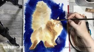 Кот акварелью / Watercolor cat