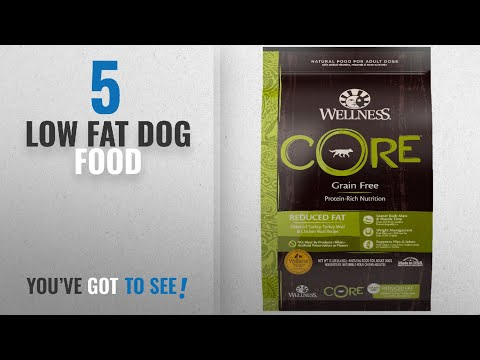 Top 5 Low Fat Dog Food [2018 Best Sellers]: Wellness CORE Natural Grain Free Dry Dog Food, Reduced