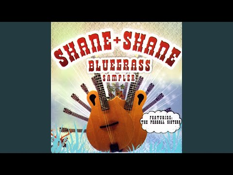 Waiting Room Chords By Shane Shane Worship Chords