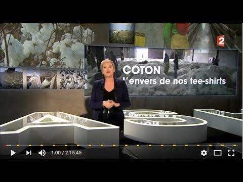 Cash investigation : Coton l'envers de nos tee shirts !