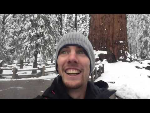 General Sherman in snow